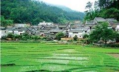 我爱我的家乡英语作文:i love my village